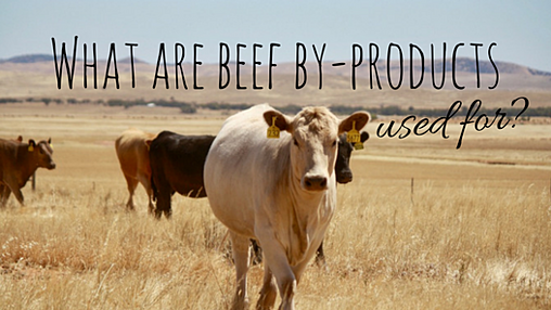 Beef by-products 2.png