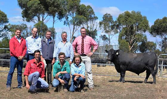 ROYAL APPROVAL: Buyers Jack Rowe and Luke Bavistock, auctioneer Jono Spence, Mark Gubbins, auctioneer Ross Milne and (front) Martin Beltrame, Max and Anna Gubbins, with the $15,500 sale-topper.