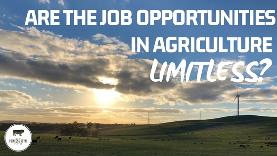 Are the job opportunities in Agriculture limitless_