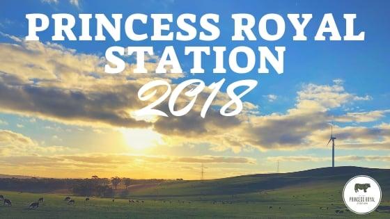 Princess Royal Station 2018 (1)
