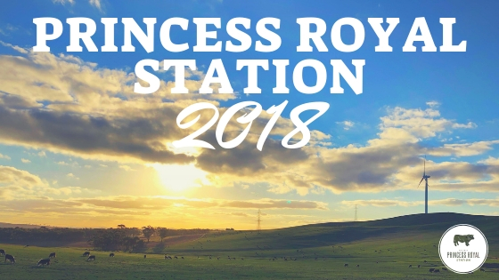 Princess Royal Station 2018 (1)