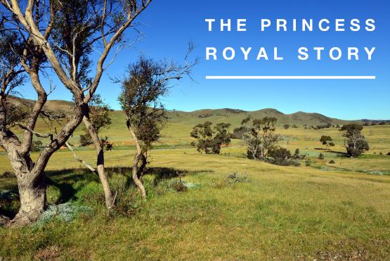 Princess-royal-story