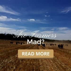 Are Farmers Mad?