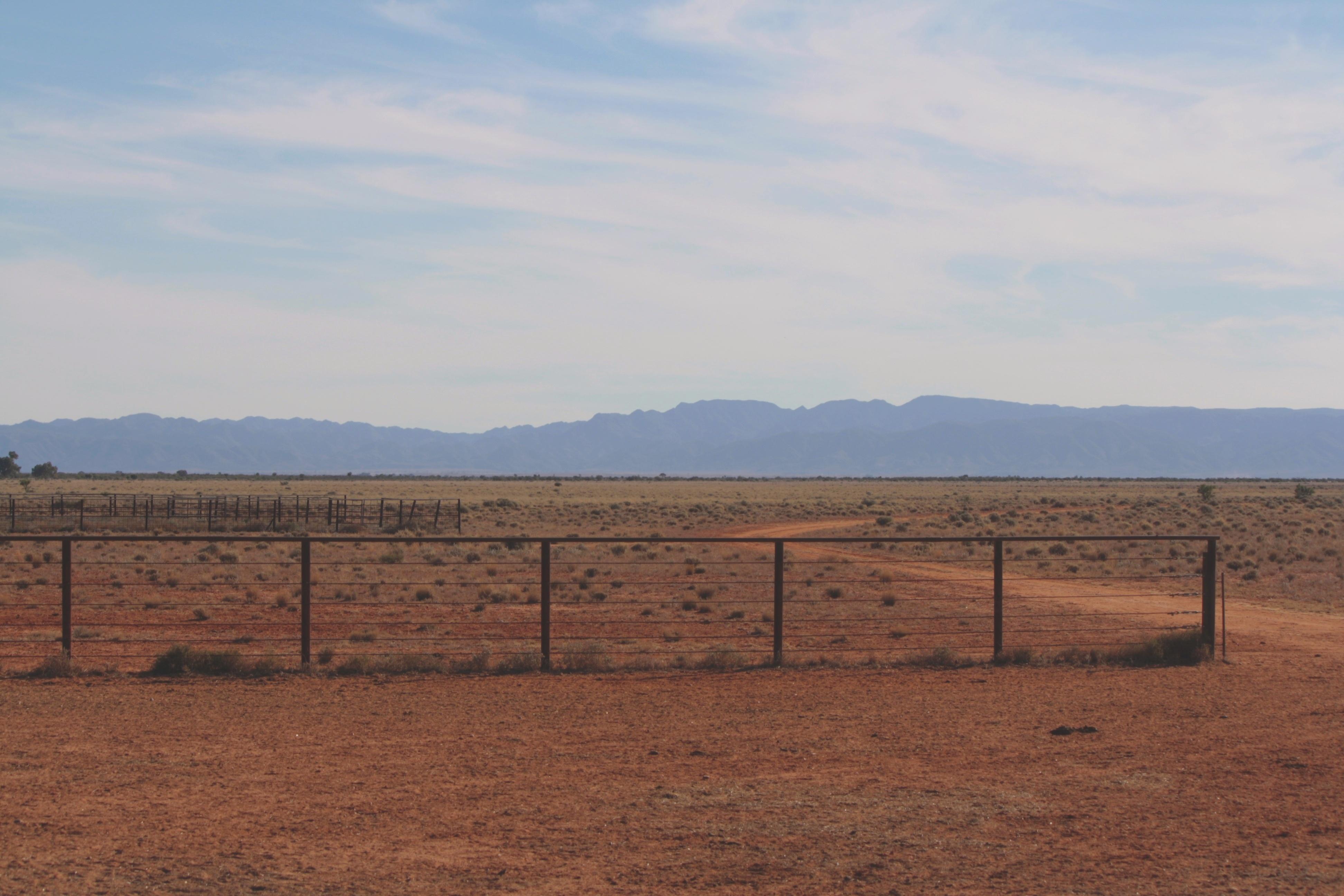 Flinders_Plains_PRS-180600-edited.jpg