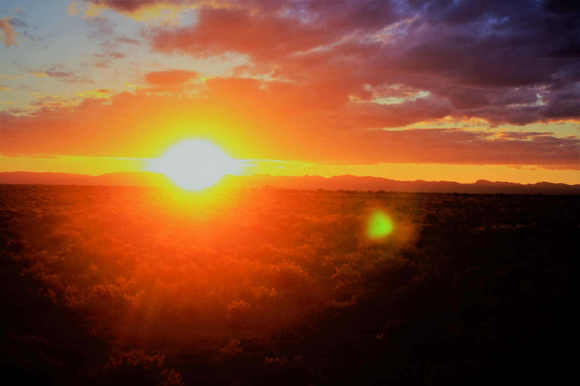 Wertaloona South Australia