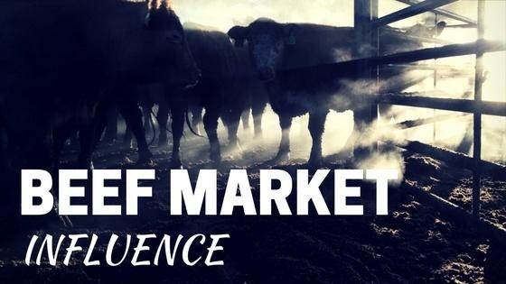 Beef Market Influence.jpg