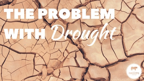 The problem with drought.jpg