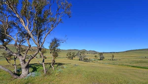Princess Royal Station Burra SA.jpg