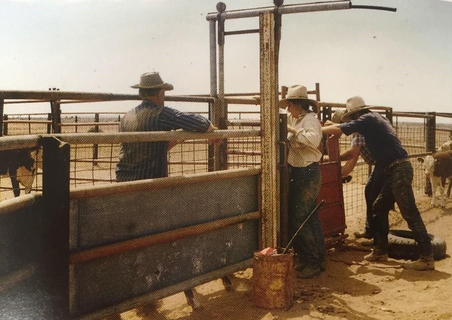 Wertaloona, Nigel Austin, The Great Cattle Trader-1.jpg